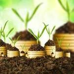 Plano ou Estratégia de Investimento